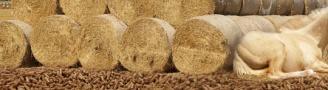Šiaudų granulės kraikui